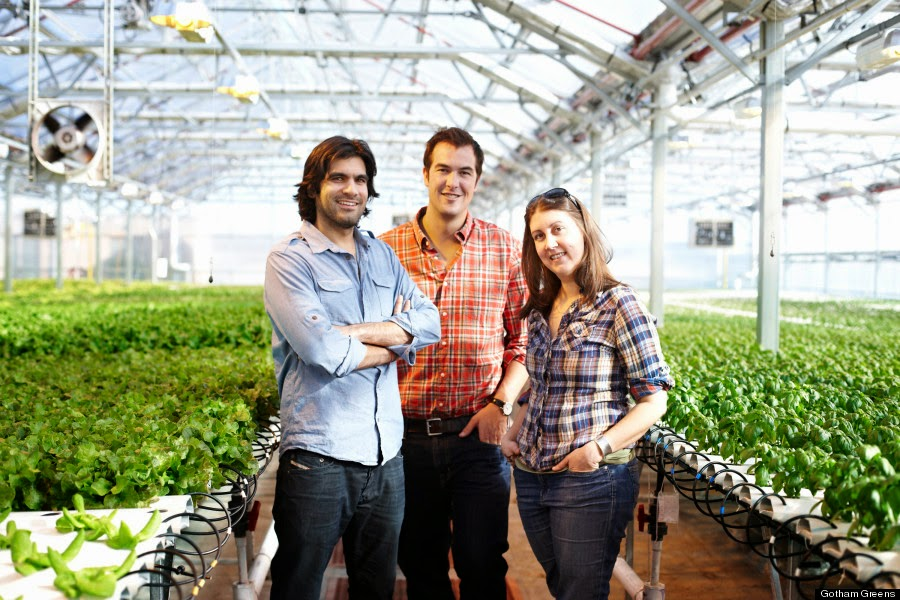 Urban Agriculture Reformed: Gotham Greens' Rooftop Greenhouse