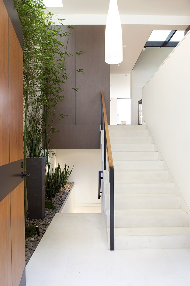 Combination of white stairs and green plants