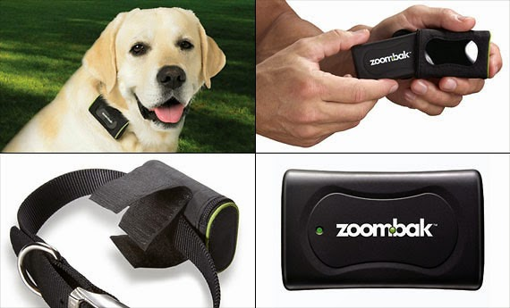 Coolest Dog Tracking GPS and Trackers (15) 3