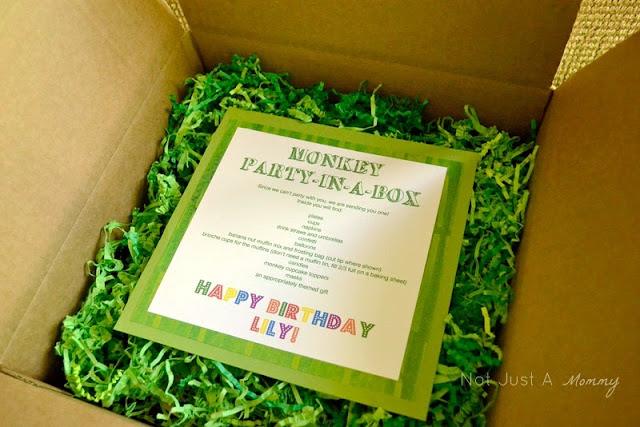 monkey party in a box with shred