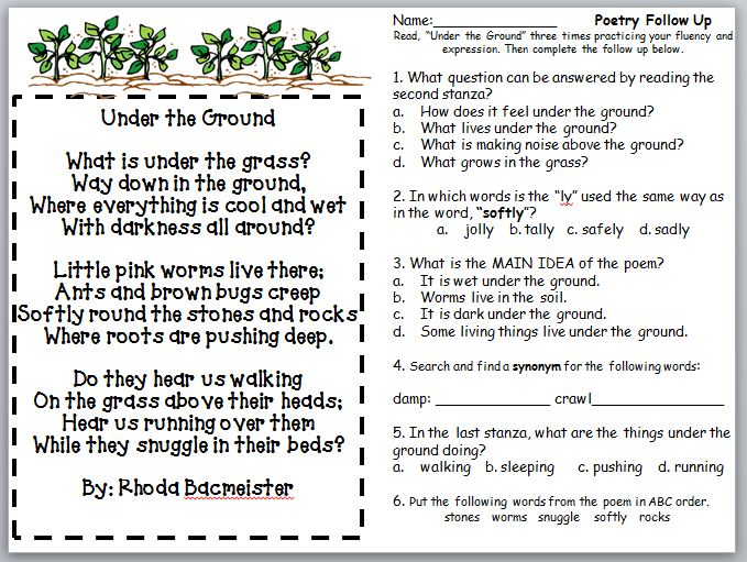 Third grade thinkers soil poetry follow ups for Soil questions