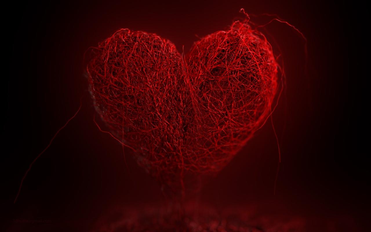 http://1.bp.blogspot.com/-b8xlFi8fOLY/Ty85xcg5zII/AAAAAAAAA0s/uJmlHAfACaM/s1600/my_heart_2-1280x800.jpg