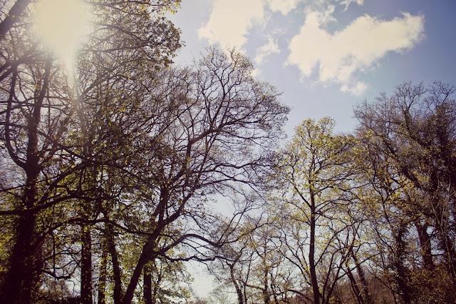 nature yorkshire