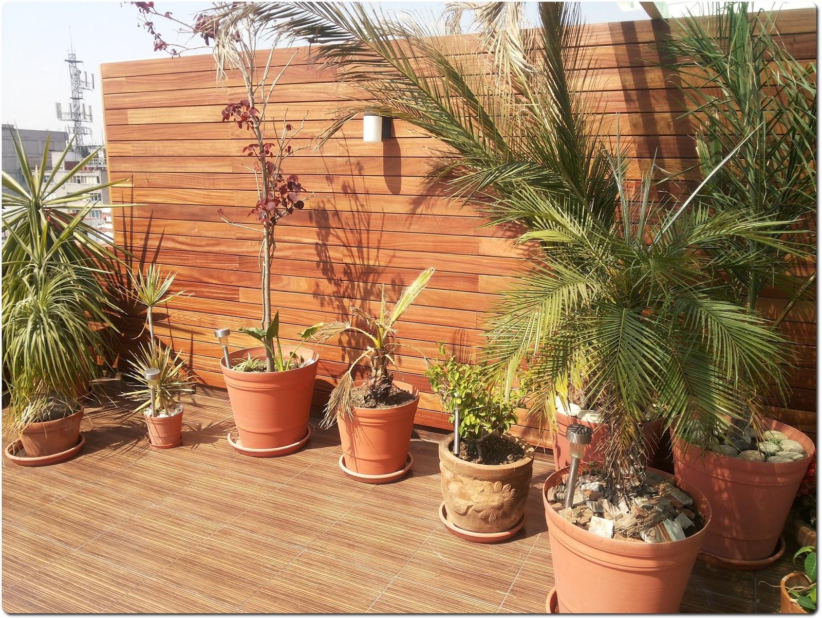 Finewoods principal terrazas jardines albercas fachadas - Fachadas para terrazas ...