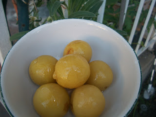 Preserved Lemons (L'Hamd Markhad)