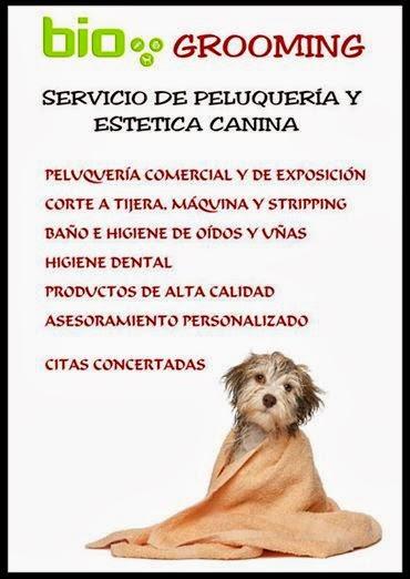 Nuevo en Bio!!!!!!! servicio de peluquería canina
