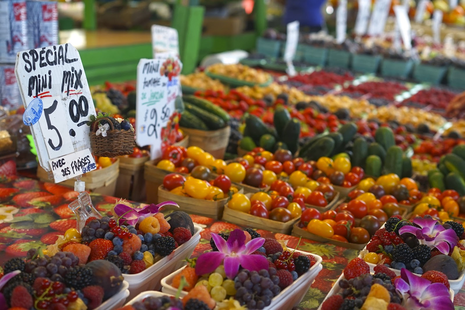jean talon fruit market