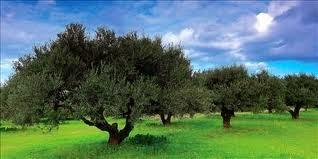 eco tourism crete