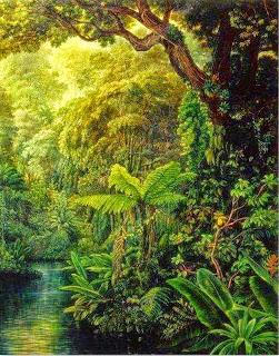 imagenes-de-lindos-paisajes-con-bosques