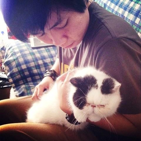 Kucing Muntah Tidak Mau Makan Cara Mengatasi Kucing Sakit