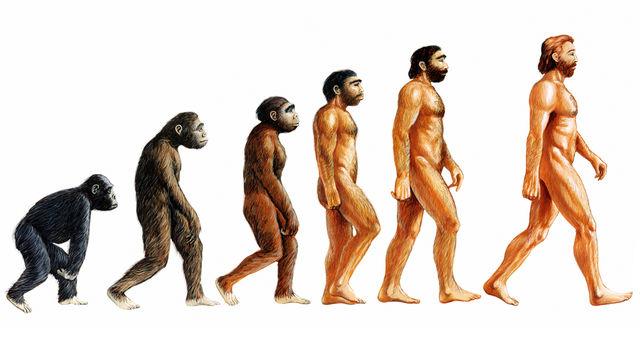 Teori Darwin