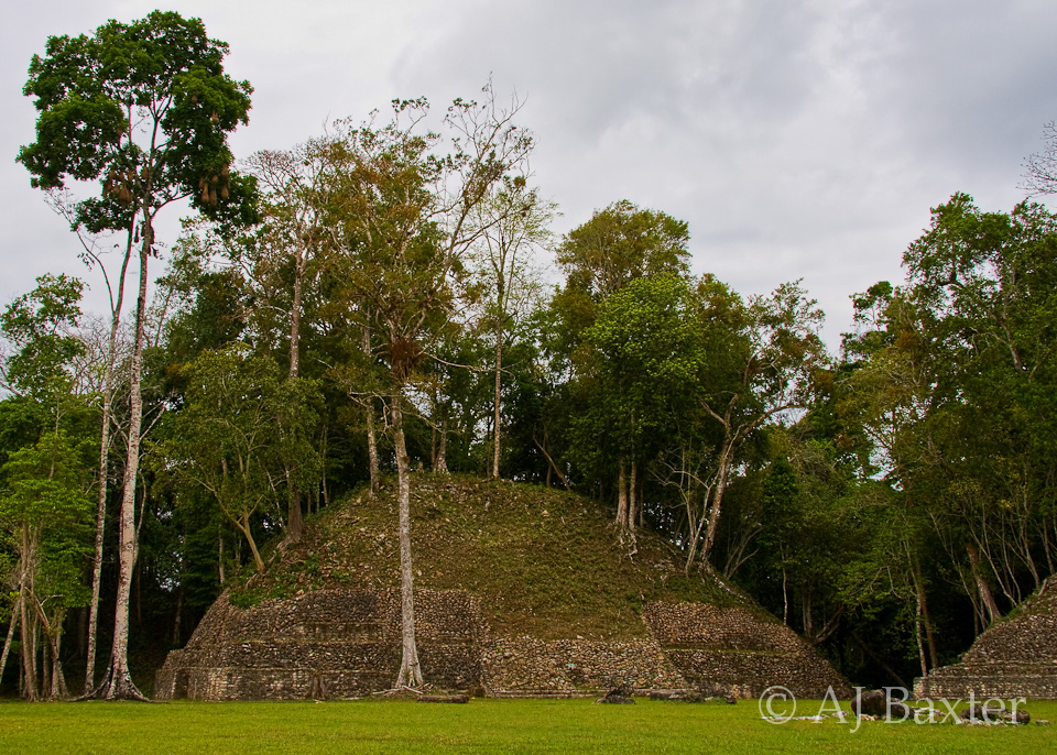 Caracol Maya Archaeological Site, Cayo District, Belize by AJ Baxter