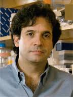 Rudy Tanzi Alzheimers Disease Tipping Point