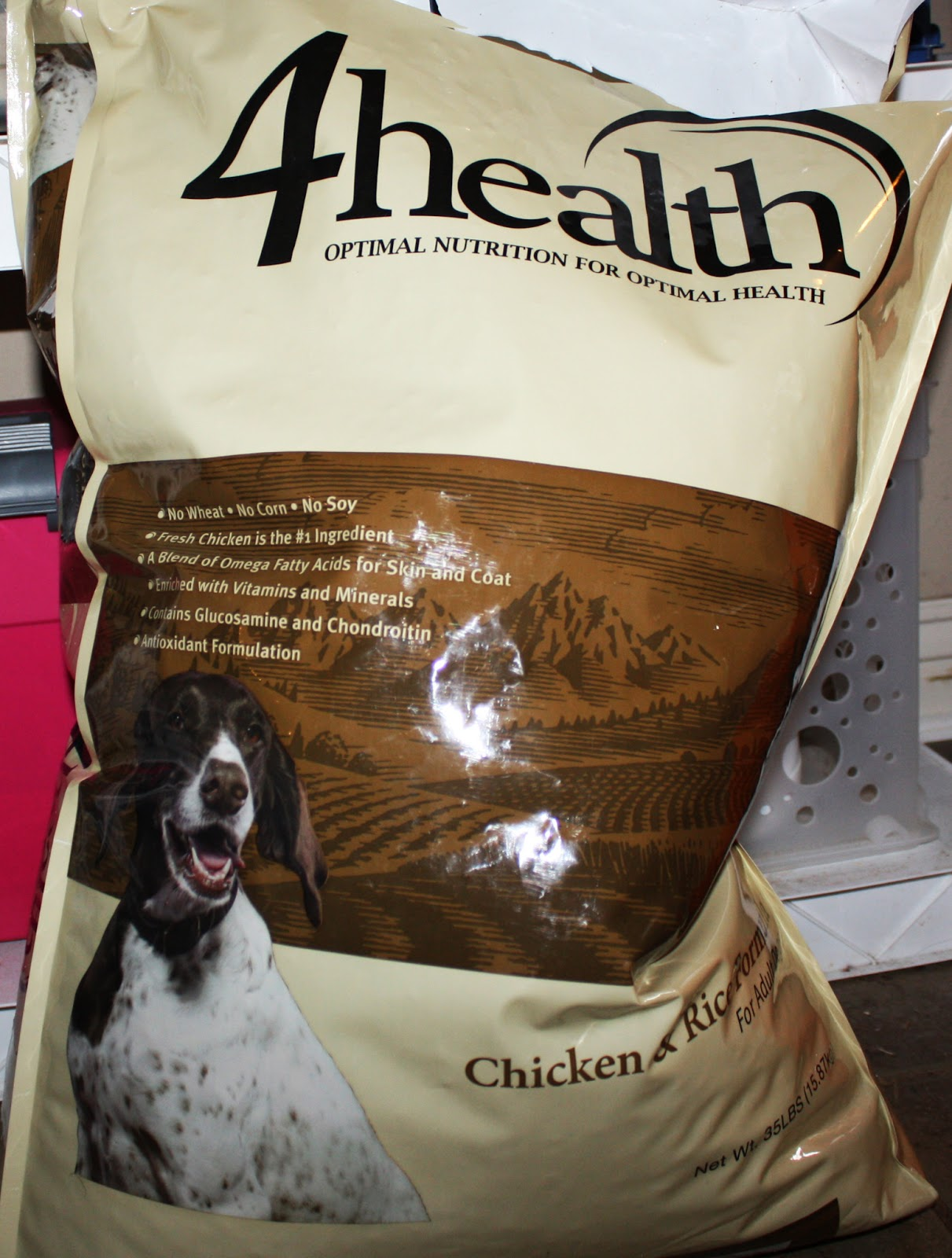 Dog Skin Allergies with Elegant  4 health food for your inspiration