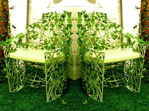 Dise o de jardines elecci n de plantas trepadoras for Plantas trepadoras de jardin