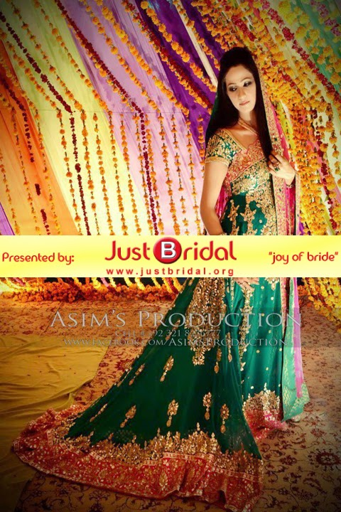 Pakistani girls new mehndi dress design