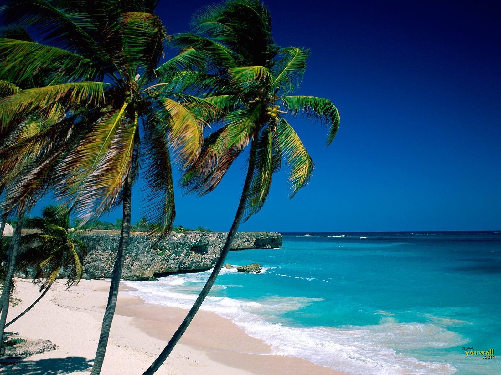 http://1.bp.blogspot.com/-bB-Q5W8cDr8/TwAnGdAO17I/AAAAAAAAAdE/yQvGiqm5tMs/s1600/Beach+View.jpg
