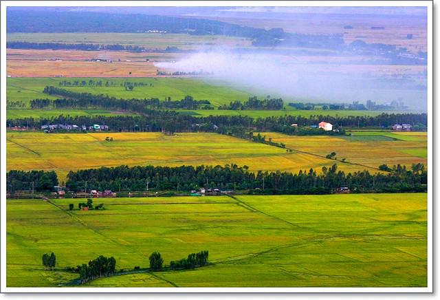 Châu Đốc Farmstead