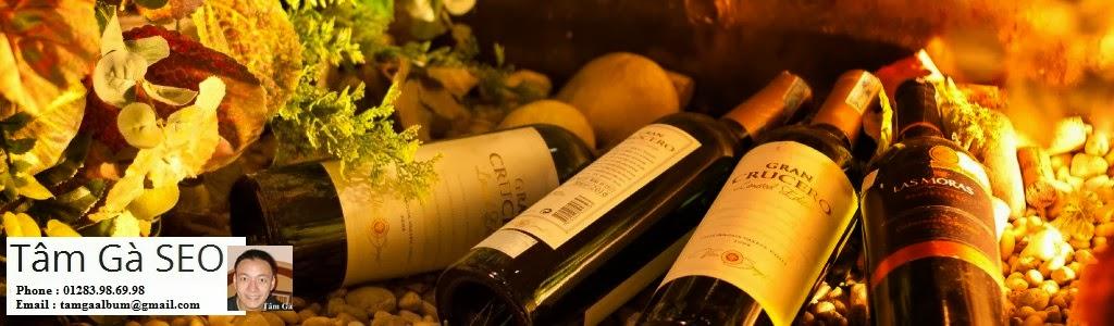 rượu vang ngon chính hãng | rượu vang ngon ngoại nhập
