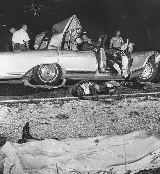 Dog Crashes Car