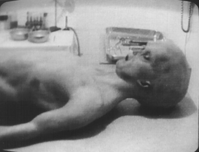 roswell ufo incident. incident Roswell