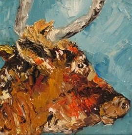 Rosie Bell, a horned cow portrait