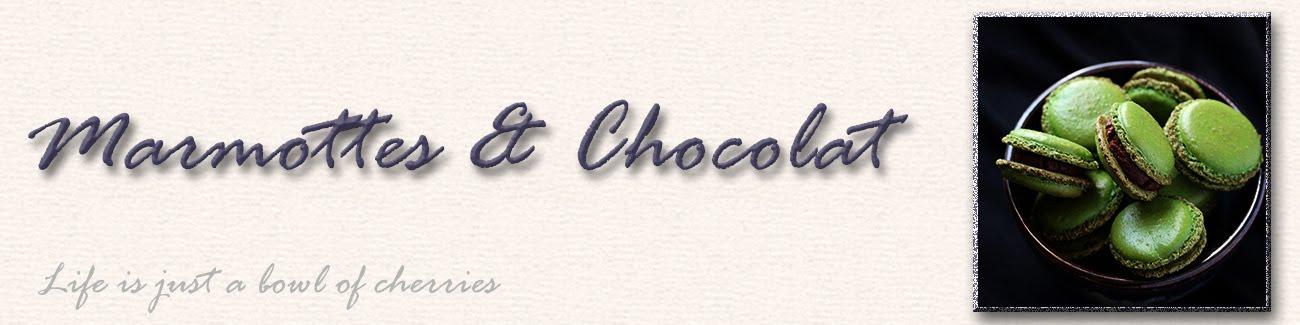 Marmottes et Chocolat
