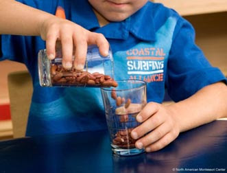namc adding variety montessori practical life boy pouring beans