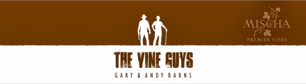 The Vine Guys