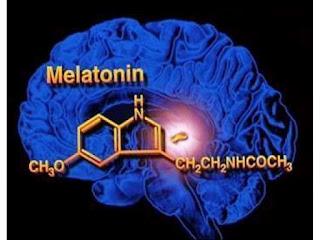 http://1.bp.blogspot.com/-bClX07mA_rg/UAn_0x4VCNI/AAAAAAAAAgs/hXhgA9YJr-k/s1600/Melatonin-Hormonu-.jpg