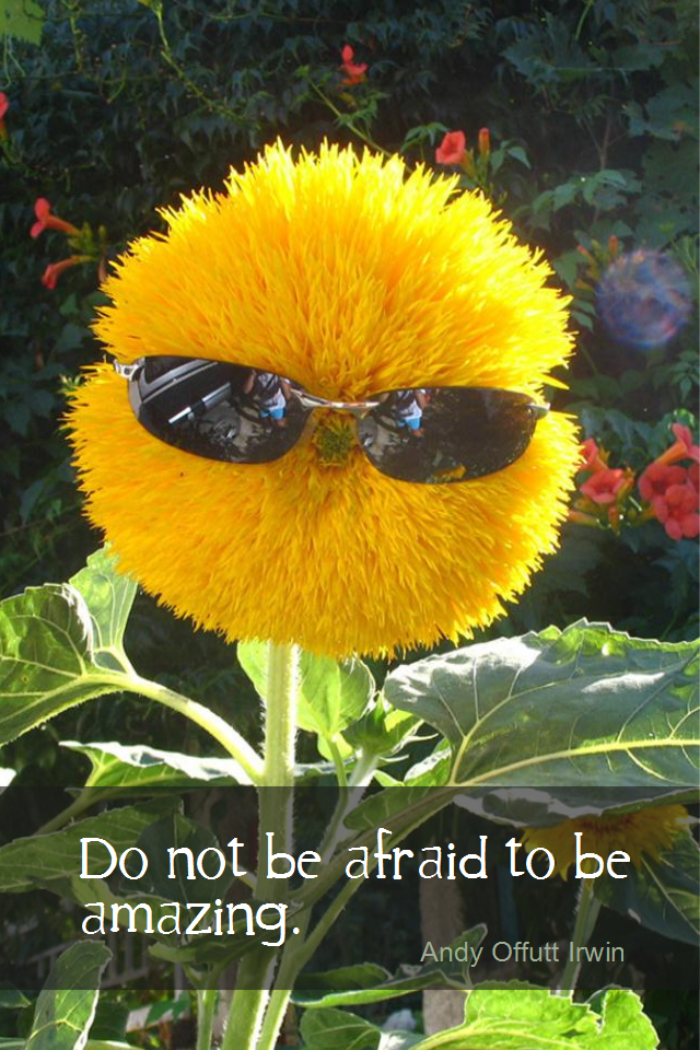visual quote - image quotation for ATTITUDE - Do not be afraid to be amazing. - Andy Offutt Irwin