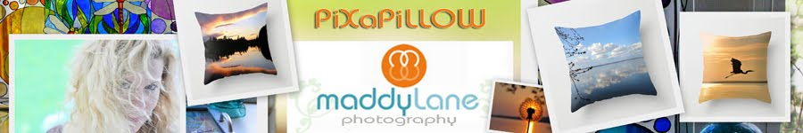 PiXaPillow ~ by MaddyLane Photography