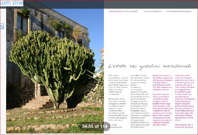 L'estate nei giardini meridionali su Blossomzine n.5