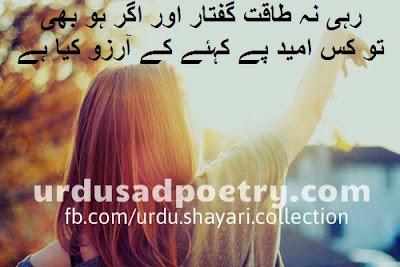Rahi Na Taaqat-E-Guftaar