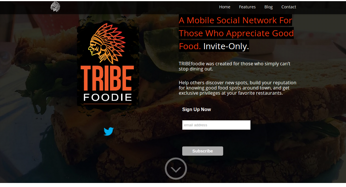 TRIBEfoodie frontpage startup