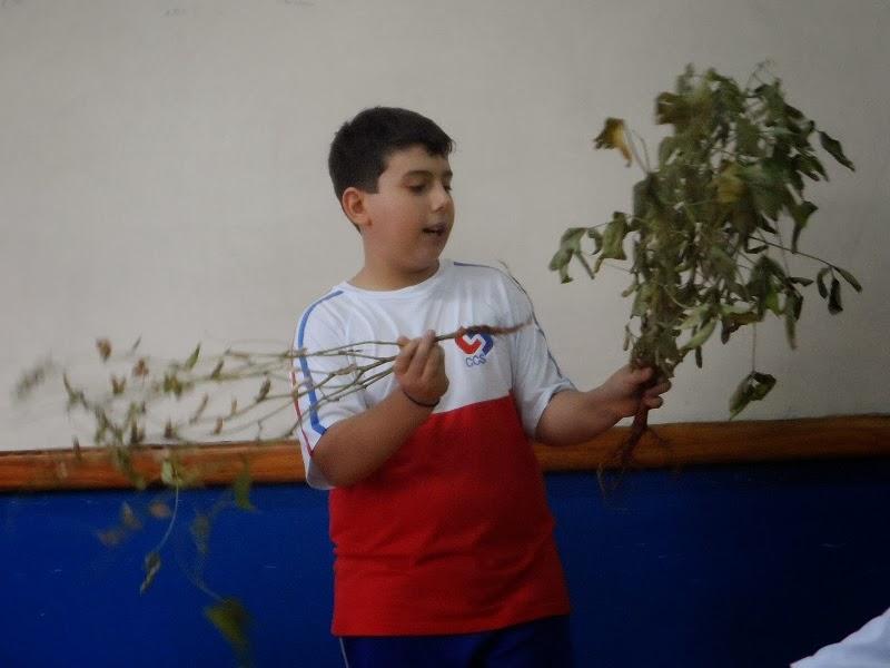 Aqui tem uma foto do Artur explicando sobre transgênico. www.professorjunioronline.com
