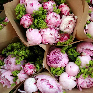Just a Stylish blog loves peonies