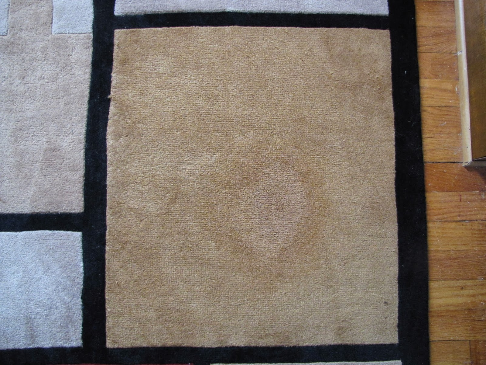 The stain is removed and the carpet is cleaned. The spot that is visible in the photo is not a stain, nor is it discoloration. This is simply the wet area ...