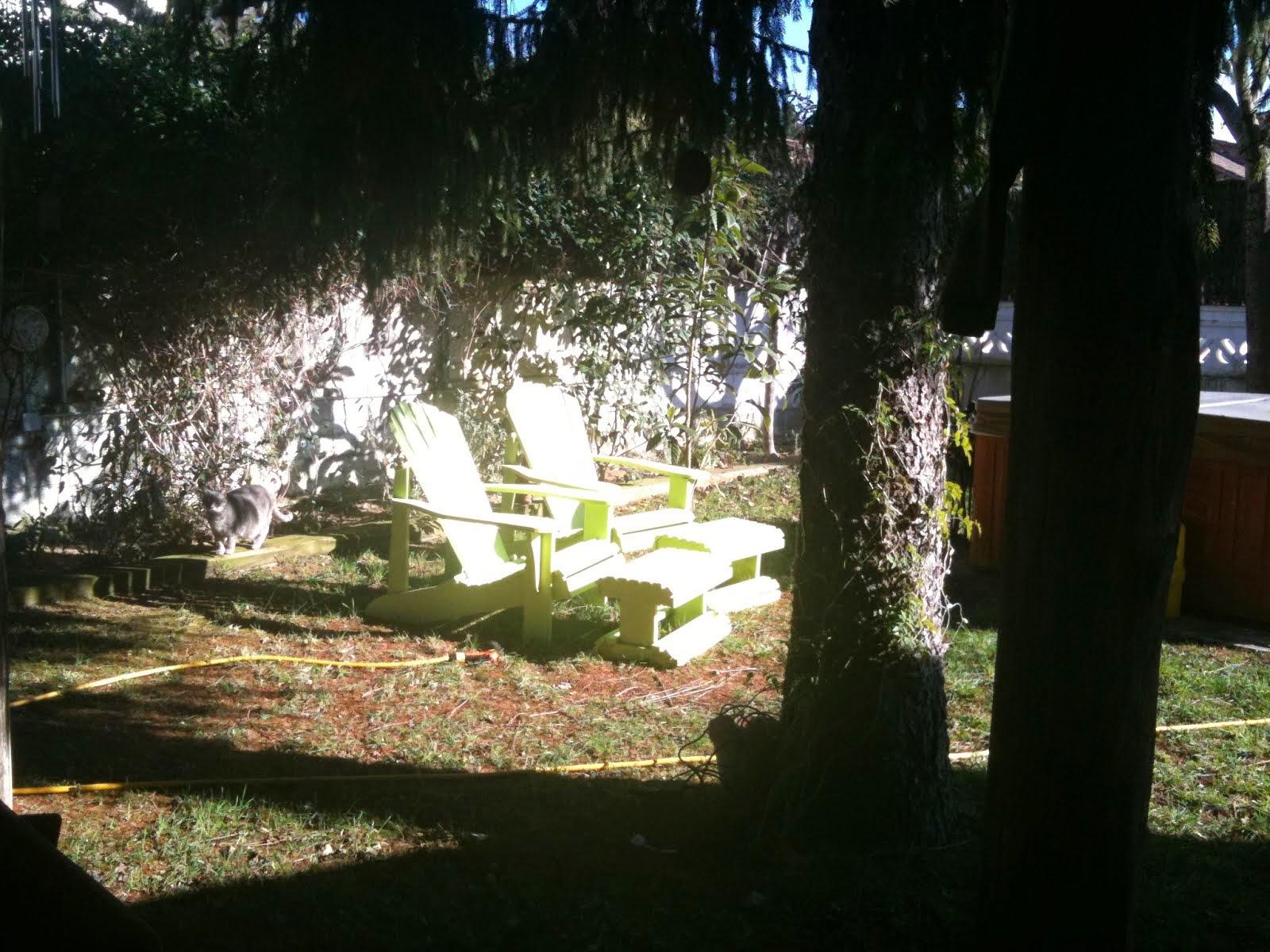 jardi tranquil i aillat