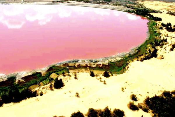 8 Danau Pink Terindah di Dunia: Danau Retba, Senegal