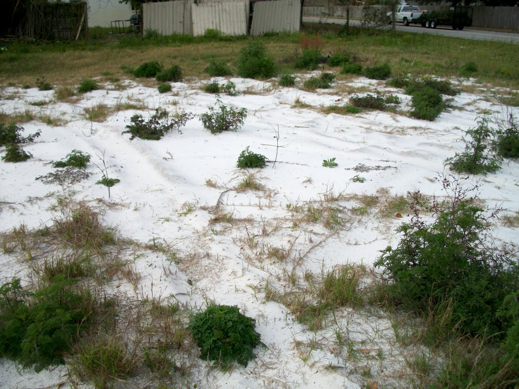 Sand For Backyard cabin talk: disapperaing garden hose