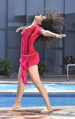 Tapsee Stills from Latest Telugu Movie Veera