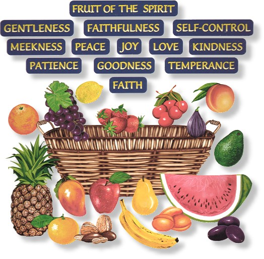 new fruit fruits of the holy spirit