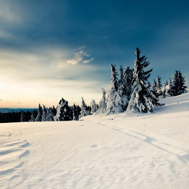 winter ipad wallpaper 3