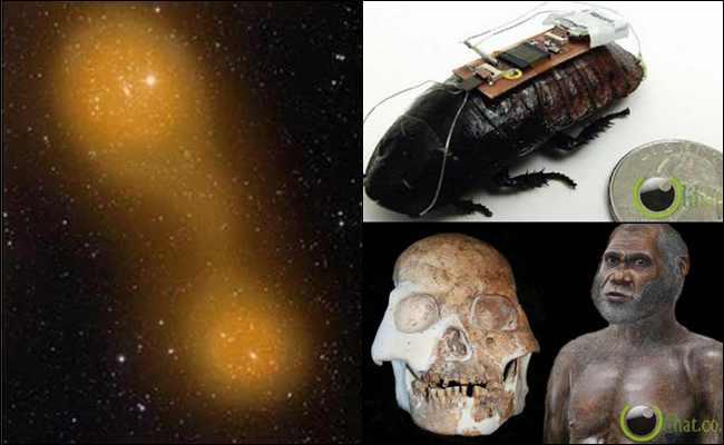 7 Penemuan Ilmiah yang paling Aneh di Dunia