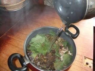 medicinal siberian chaga mushroom recipe 08