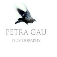 petra gau photography