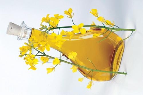 unbelievable benefits of rapeseed oil sweet additions. Black Bedroom Furniture Sets. Home Design Ideas