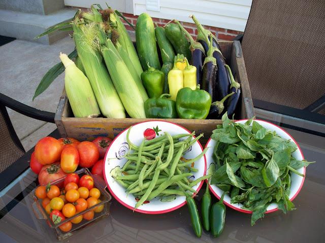 Organic corn pepper eggplant tomato beans basil