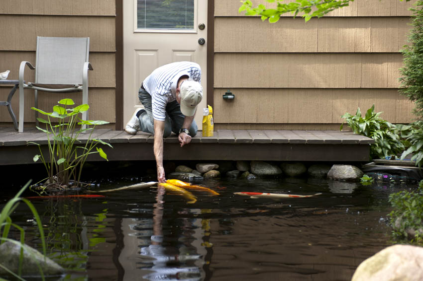Aquascape your landscape every deck needs a pond for Koi pond deck